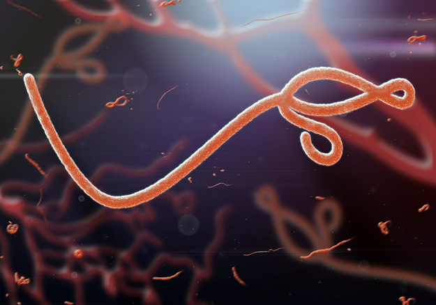Tech Response to Ebola: Zuckerberg, Microsoft & Open Source